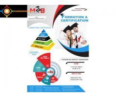 Certification en Excellence Opérationnelle (Lean management et Lean Six Sigma)