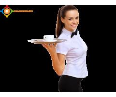 مطلوب نادلات للعمل في مقهى