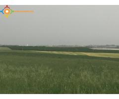 Terrain de 2 hectares