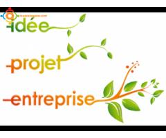 Création des Entreprises