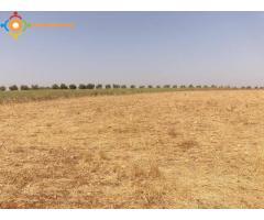 Terrain agricole fertile