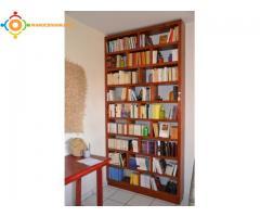 Vends lot de plus de 1500 livres en français et 200 en italien