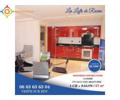 Appartements Studio à Racine