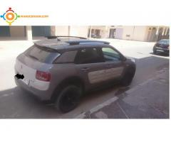 C4 cactus shine tte options mod 2016