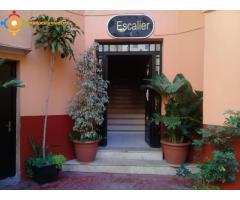 Appartement proche hyper centre de Tanger
