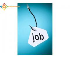 Offre d emploi