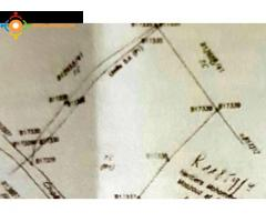 Terrain agricole titré à Bir Tam Tam
