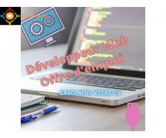 Développeur / Développeuse Web (H ou F)