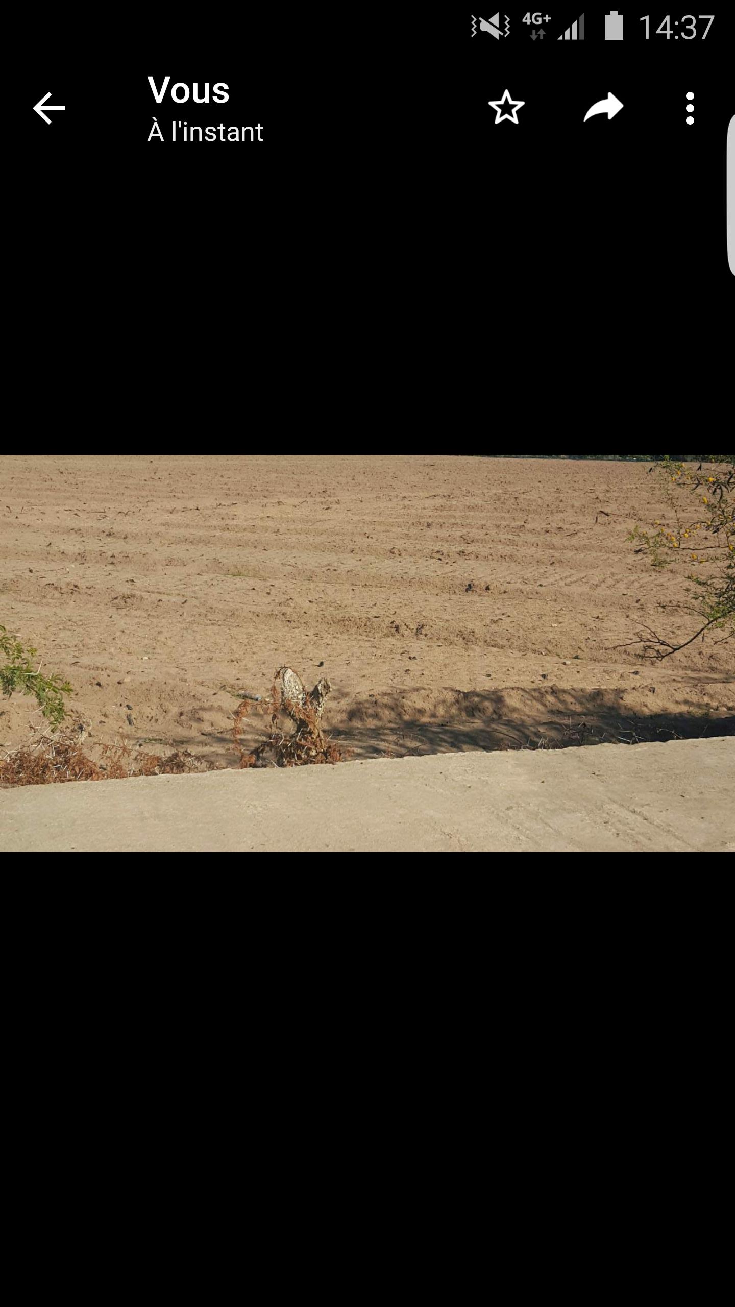 34 hectars guiche à 10 km de Chichaoua à vendre